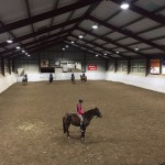 Stuxit AB Horse Riding Club
